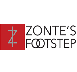 Zontes Footstep